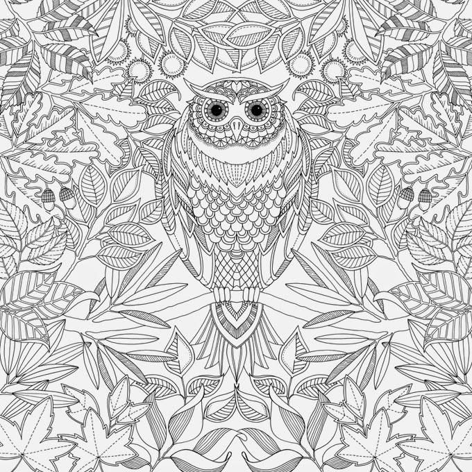 Illustrator Johanna Basford Designs Intricate And Enchanting Adult Coloring Books Filled With Pages Sure To Stimulate Your Imagination