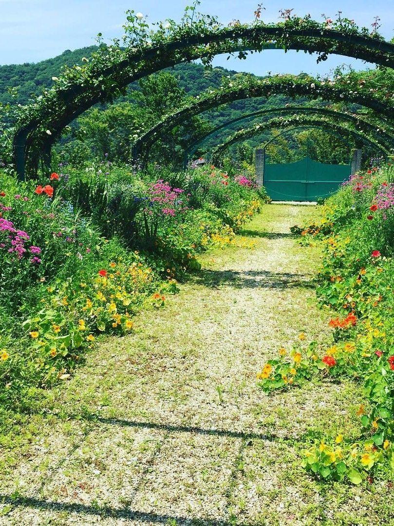 Kitagawa Village Monets Garden Marmottan Kochi Japan Vegetables GardenVegetable GardeningGarden StairsGarden CottageEnglish