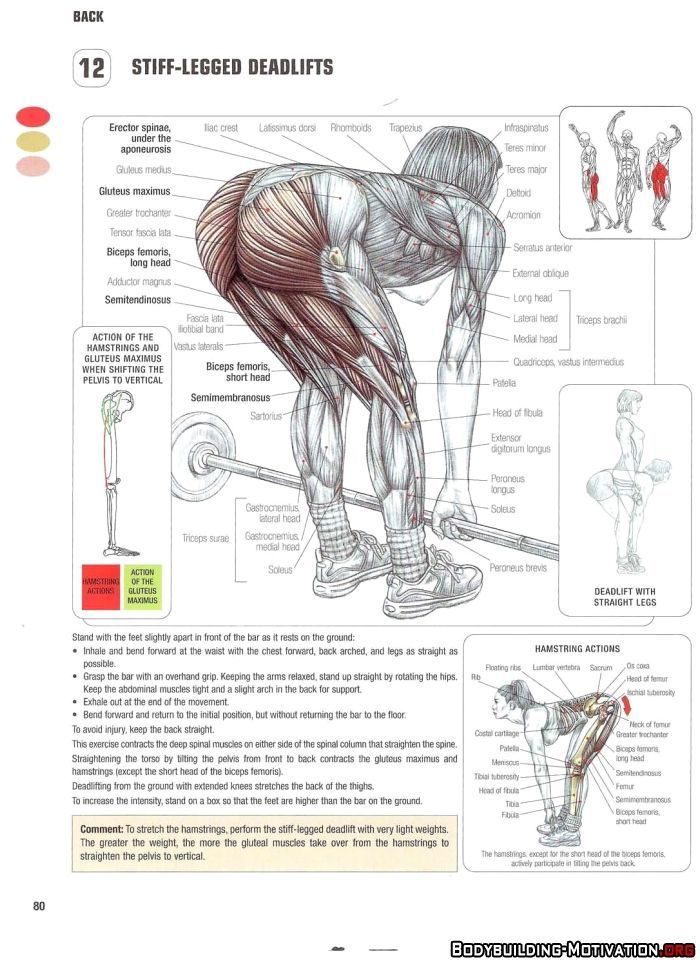 Embedded image   exercise   Pinterest   Exercises, Workout and Gym