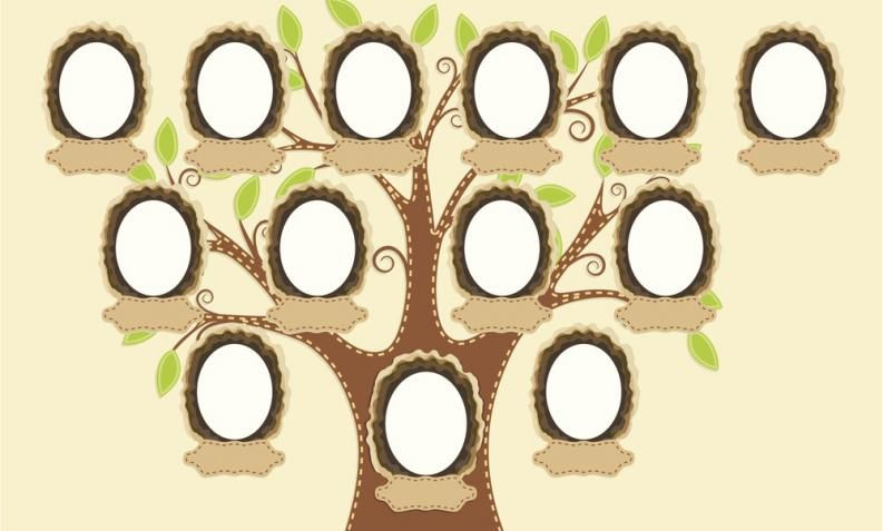 Pasos para hacer un rbol geneal gico con los ni os - Ideas para hacer un arbol genealogico ...