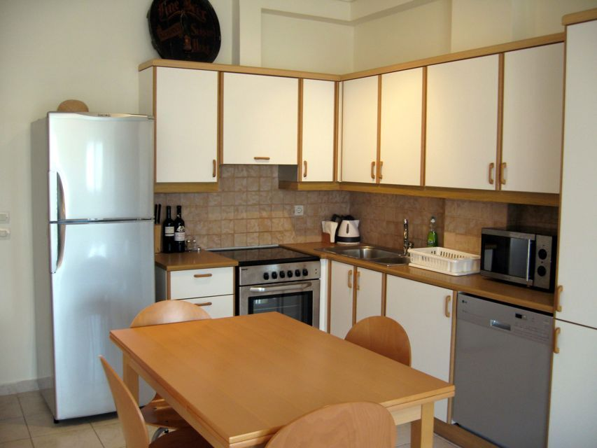 What to take note in apartment kitchen designs home and for Tiny apartment kitchen solutions