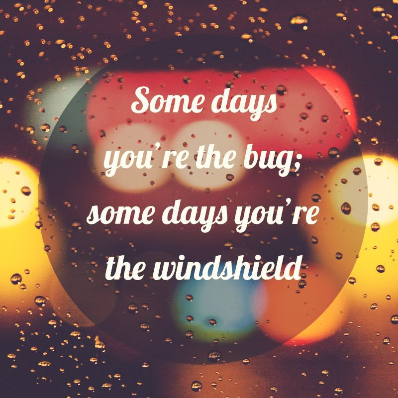 Some Days You Re The Bug Some Days You Are The Windshield Quotes To Live By Words Are You Happy