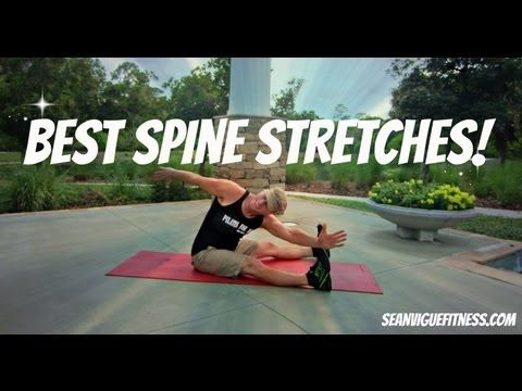 best spine stretches  beginner exercises to stretch your
