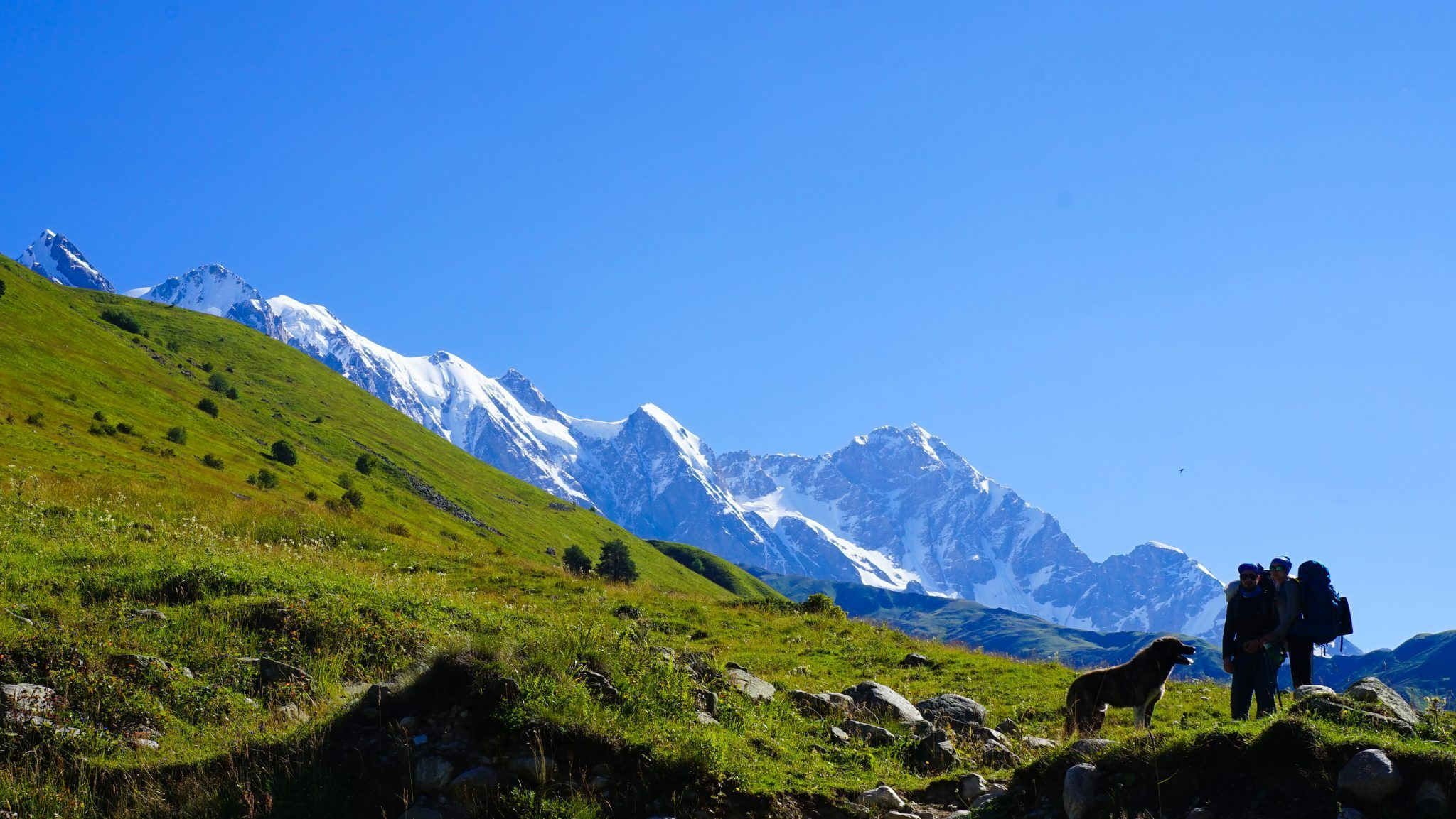 Guide To Svaneti Trekking A Highly Rewarding And Easy 3 Day