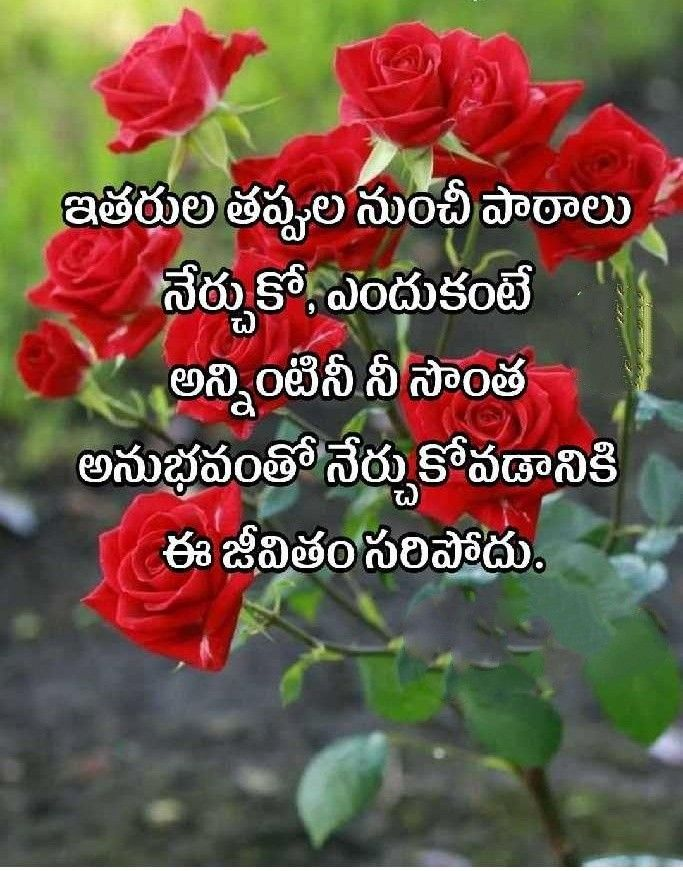 Pin by Murali on కోట్స్ Devotional quotes, Life quotes