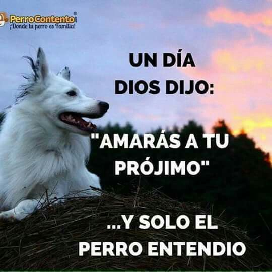 Dios dijo...
