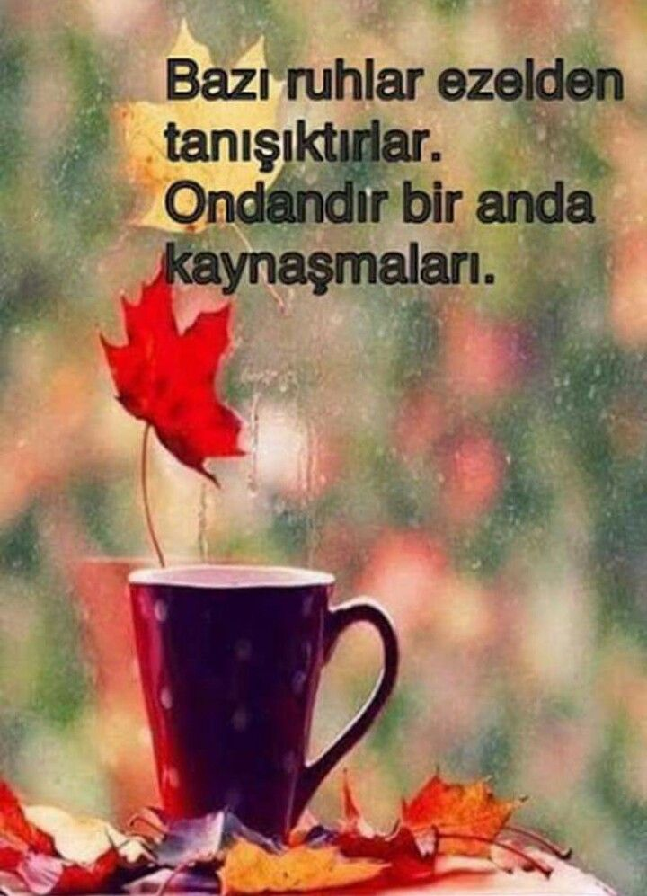 Sen Ve Ben Gibi Poemsquotes Good Morning Quotes Morning Quotes