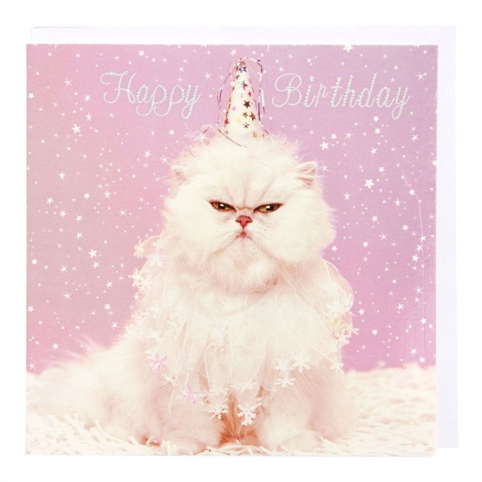 Persian cat in hat birthday card cards pinterest persian persian cat in hat birthday card bookmarktalkfo Choice Image