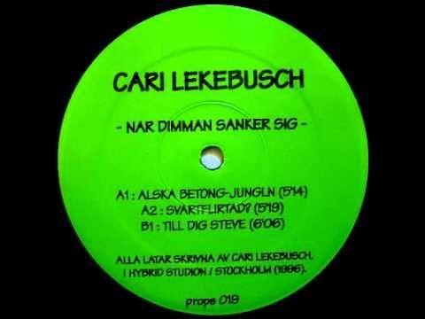 Cari Lekebusch -