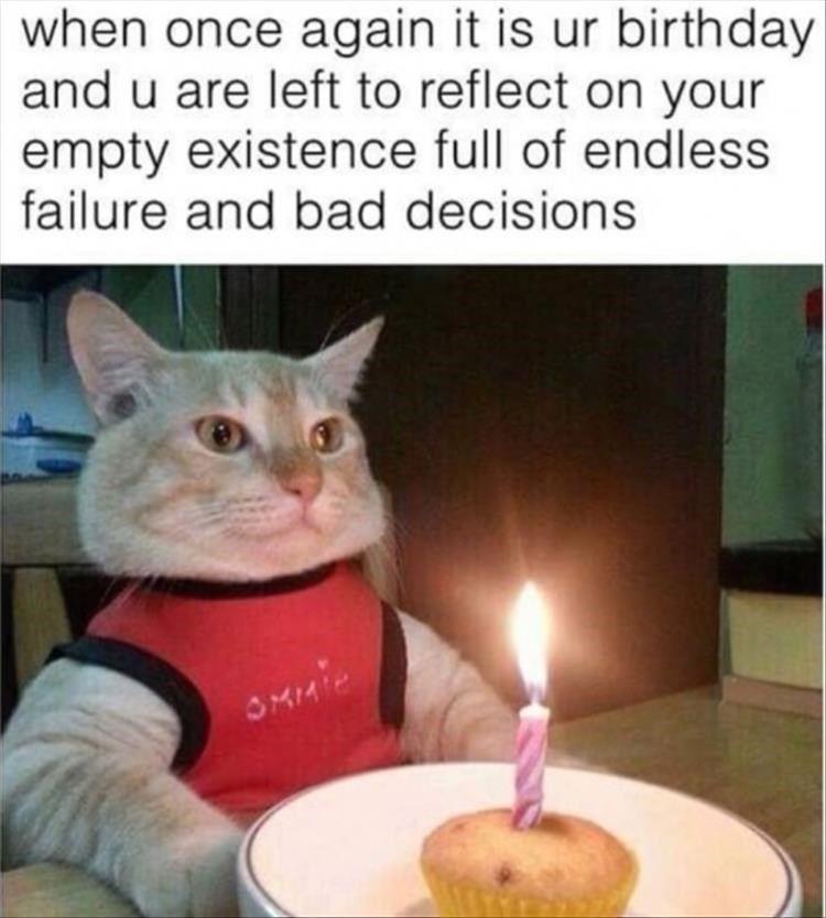 Und nein, sie schätzen es nicht, dass Sie es jedes Jahr feiern. Jedes Jahr …