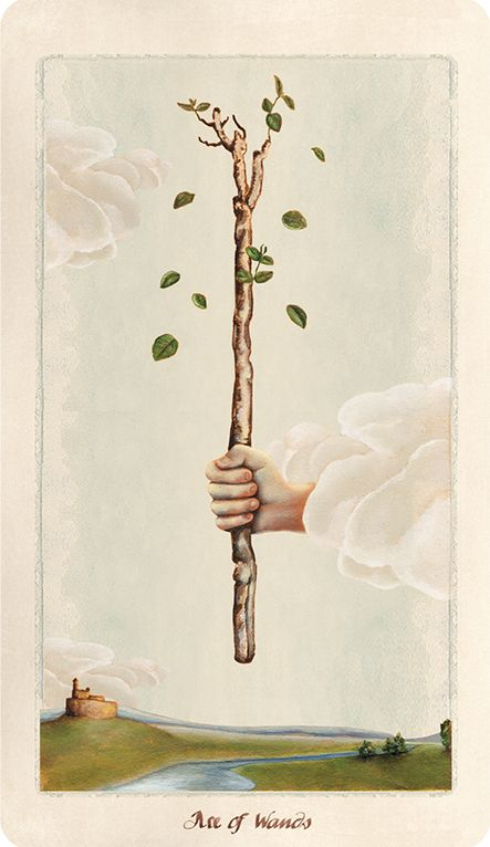 Pagan Otherworlds Tarot, Ace of Wands.  #tarot #tarotcards #wiccan #pagan
