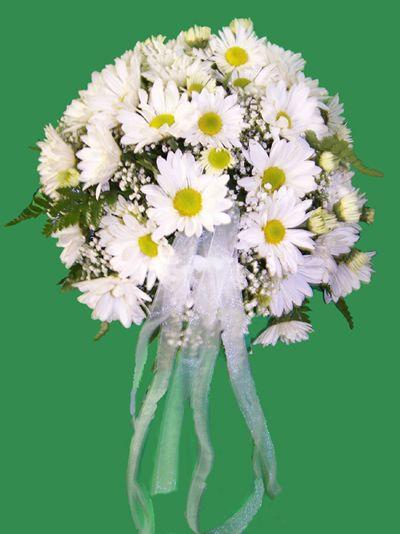 Daisy Bouquet | Wedding\'s I Designed | Pinterest | Daisy wedding ...