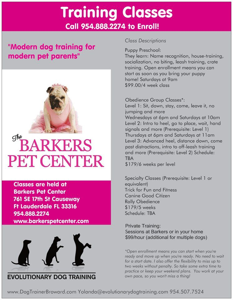 Dog Training At The Barkers Pet Center Pets Preschool Modern Pet Pet Parent