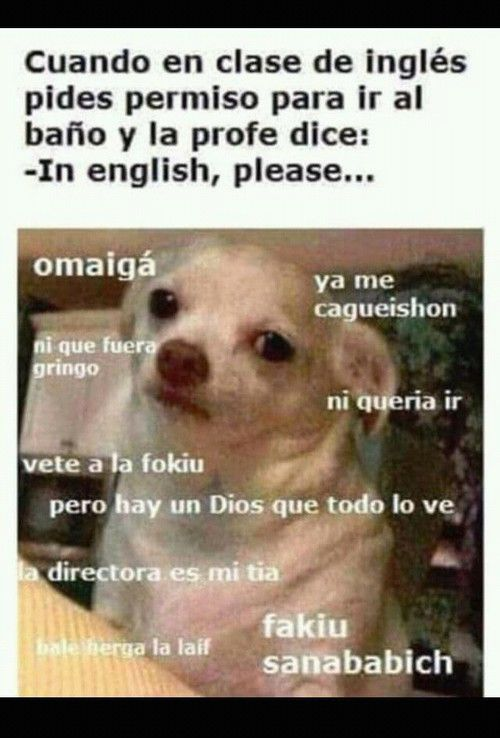 Imagen De Escuela Ingles And Bano Funny Spanish Memes Memes New Memes