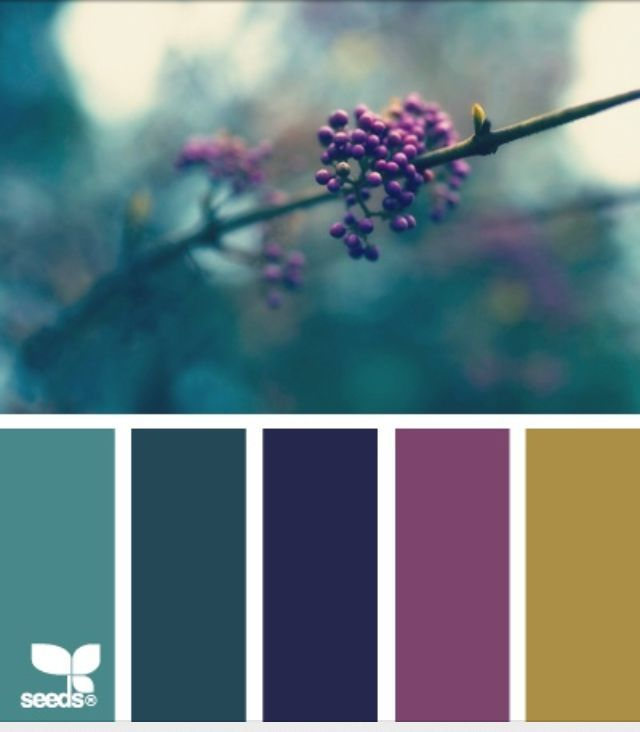 Blue Green Grey Color Scheme 1000 Ideas About Plum