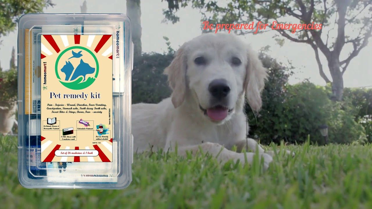 Homeopathic Pet Remedy Kit with Rescue Remedy for