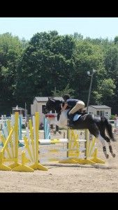 """""""I know this sounds weird, but seriously, deeper distances to oxers than verticals..."""" - JMR Judge Rob Gage Click to read why he suggested that piece of advice for this jumper pair!"""