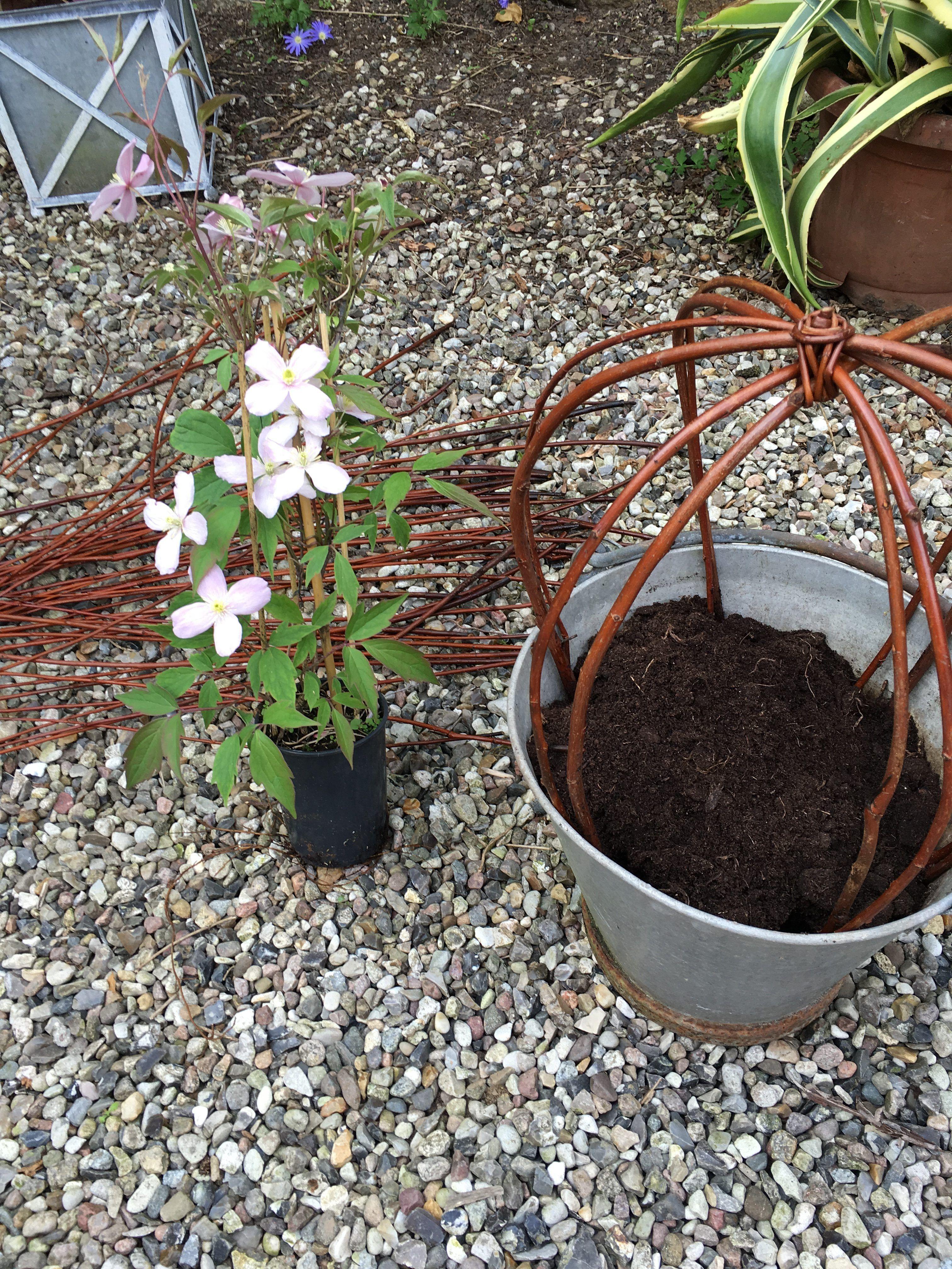 pingl par monique batisse sur tuto bouquet pinterest tressage de panier osier et d co jardin. Black Bedroom Furniture Sets. Home Design Ideas