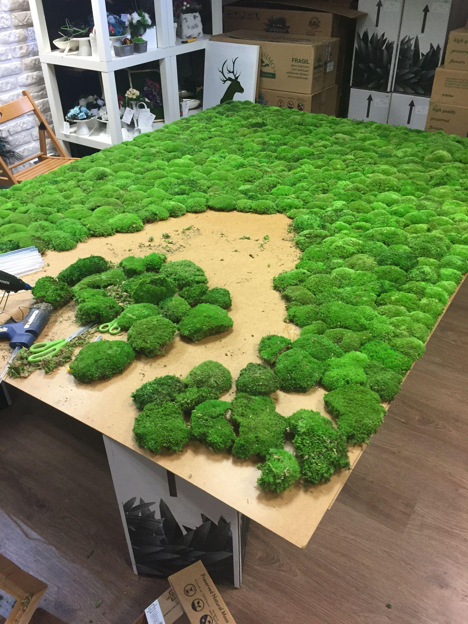 Budujemy kolejn cian z mchu stabilizowanego zielone ciany pinterest moos vertikal - Diy pflanzenwand ...