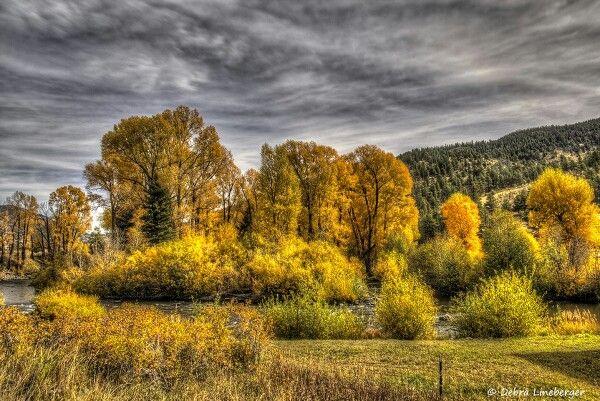 Fall along the Rio Grande River in southern Colorado