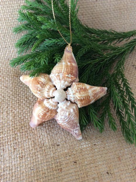 Photo of Articles similaires à Sea Shell étoiles ornement/ensemble de 3-côtes/île Christmas Noël / plage fenêtre Decor cintre/nautique / lot de 3 sur Etsy