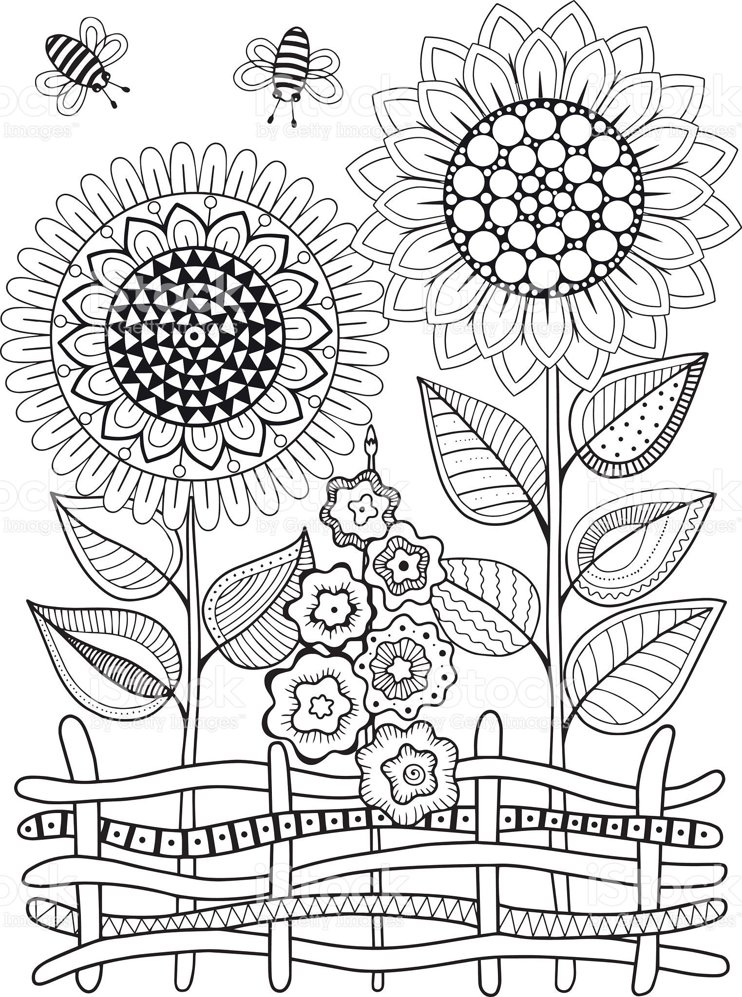 Vector Doodle Sunflowers Coloring Book For Adult Summer Flowers