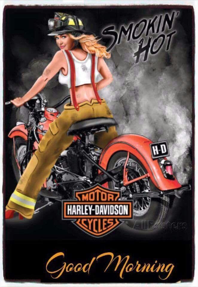 Pin de Cindy Bakken en Harley by god Davidson | Pinterest ...