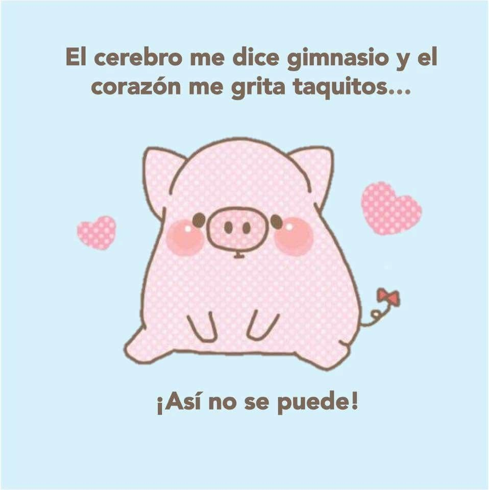 Pin de Litta Pink en cuche | Pinterest | Cerdo, Puerquitos y Humor ...