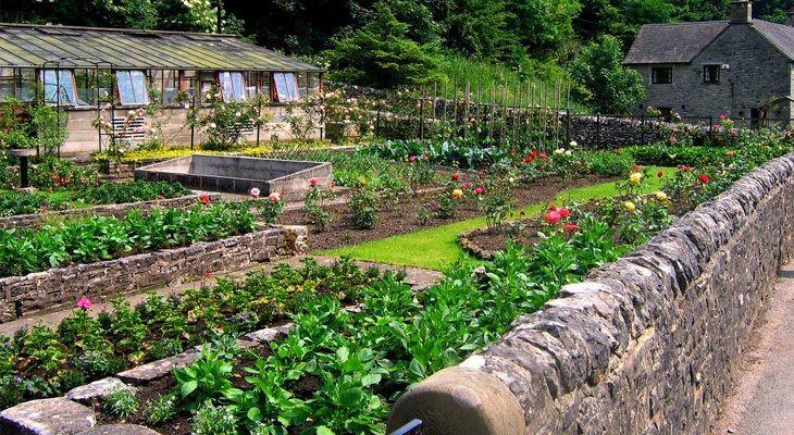 The Best Garden Tillers For The Money Backyard Garden Veggie