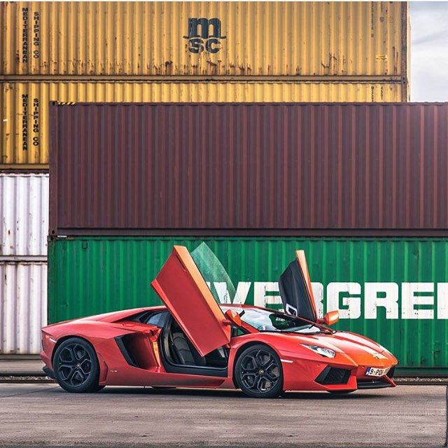 The Bull  •Lifestyle•Luxury•IgMotorhead•