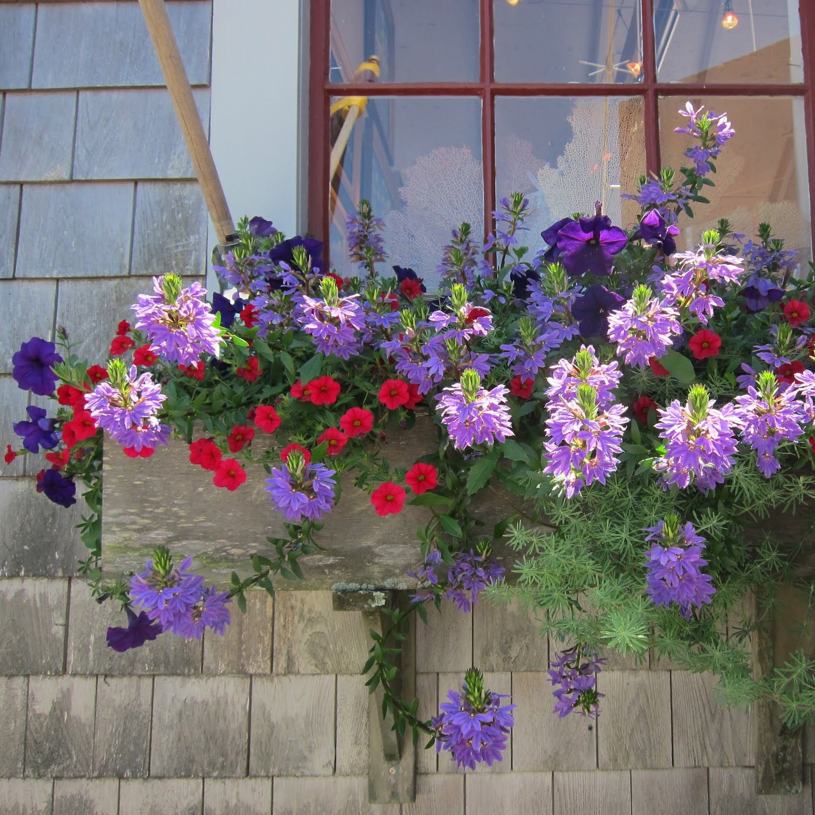 Window box ideas without flowers  imgjpg  pixels  window boxes  pinterest