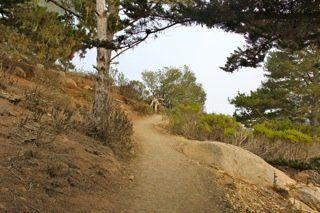 Black Hill Trail Morro Bay #Hiking #Coast #Camping http://www.cheers-2-wine.com/van-damme-state-park/