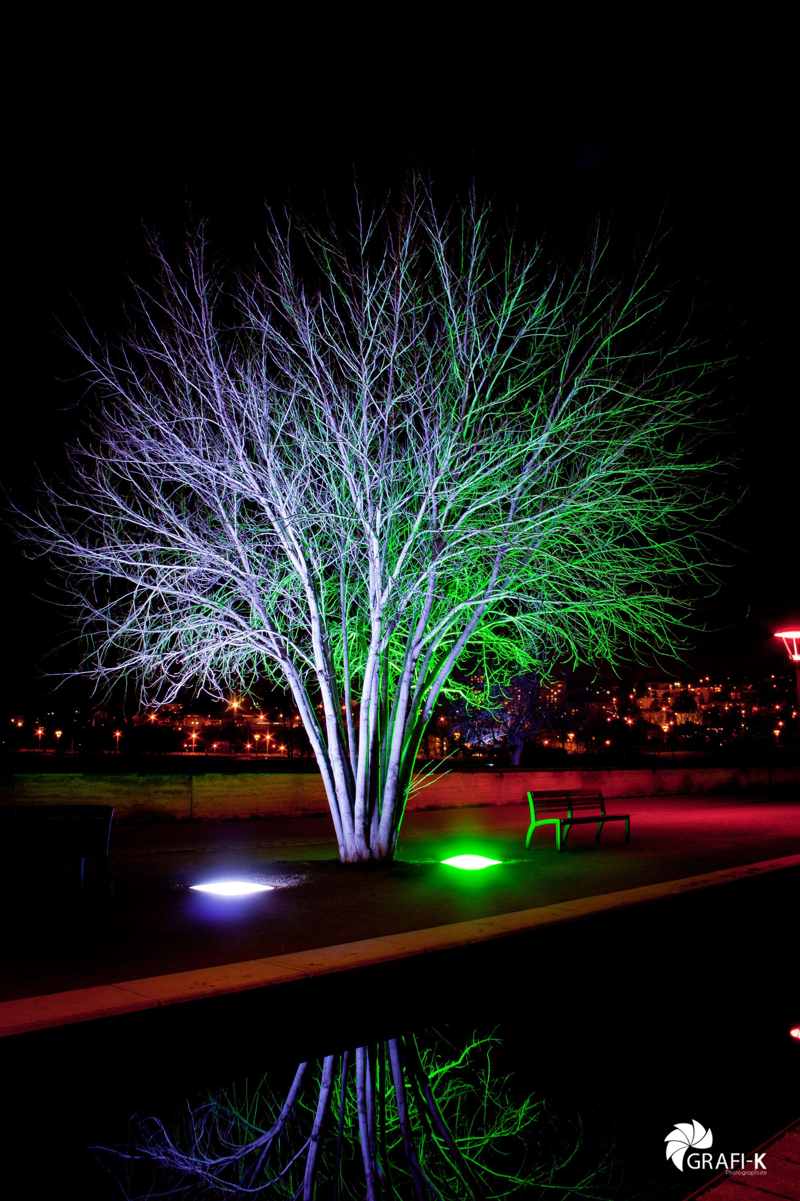 los contrastes de la iluimnación led landscape lighting