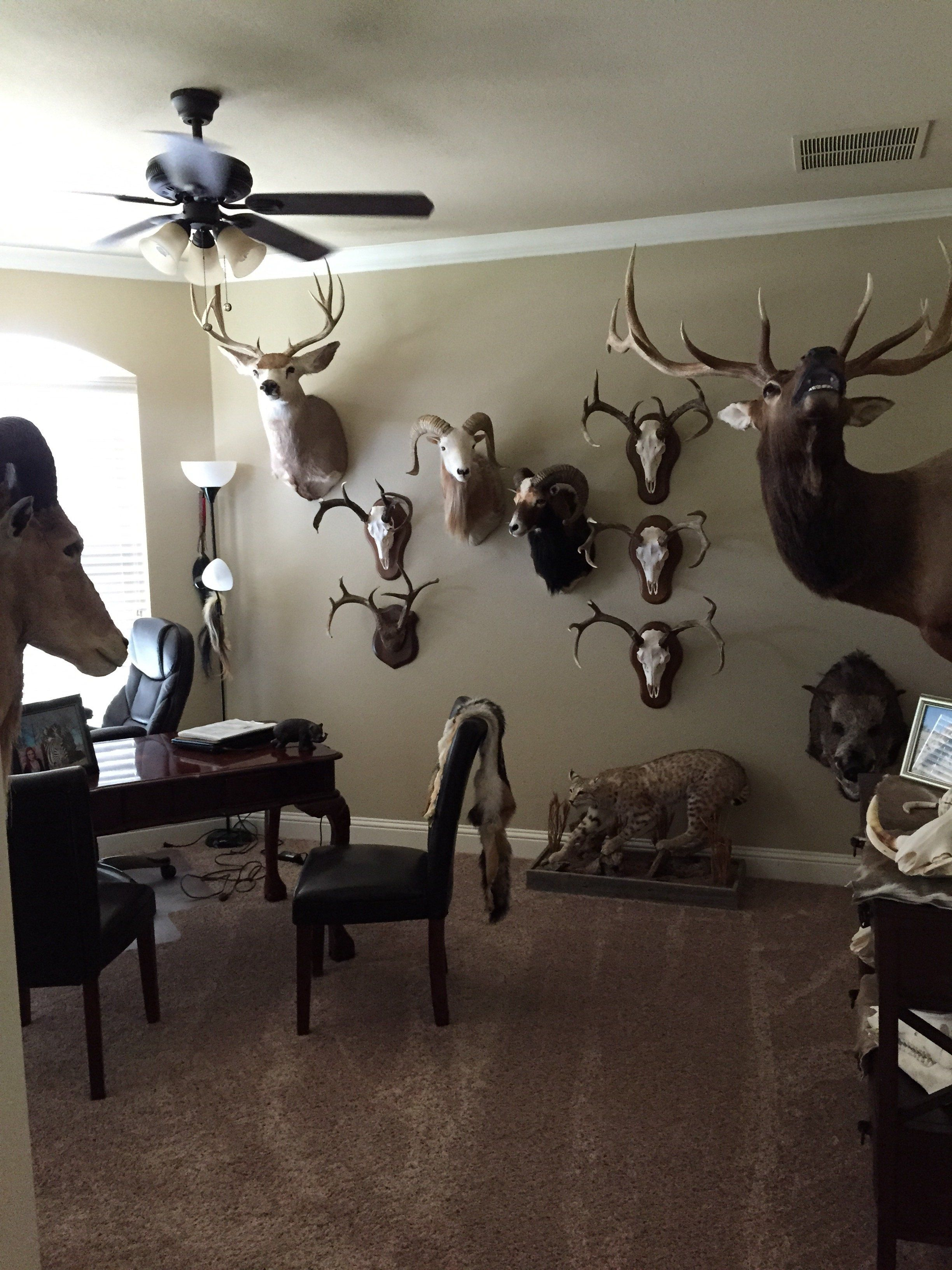 Trophy Room Pictures Trophy Rooms Man Cave Home Bar Room Pictures
