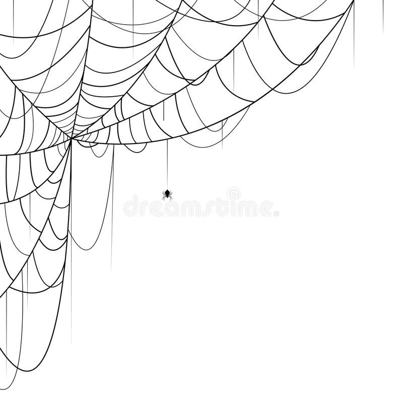 Spider Web Vector Illustration Of Spider And Web On White Background Ad Vector Illustration Spider Web Spider Web Drawing Spider Drawing Spider Art