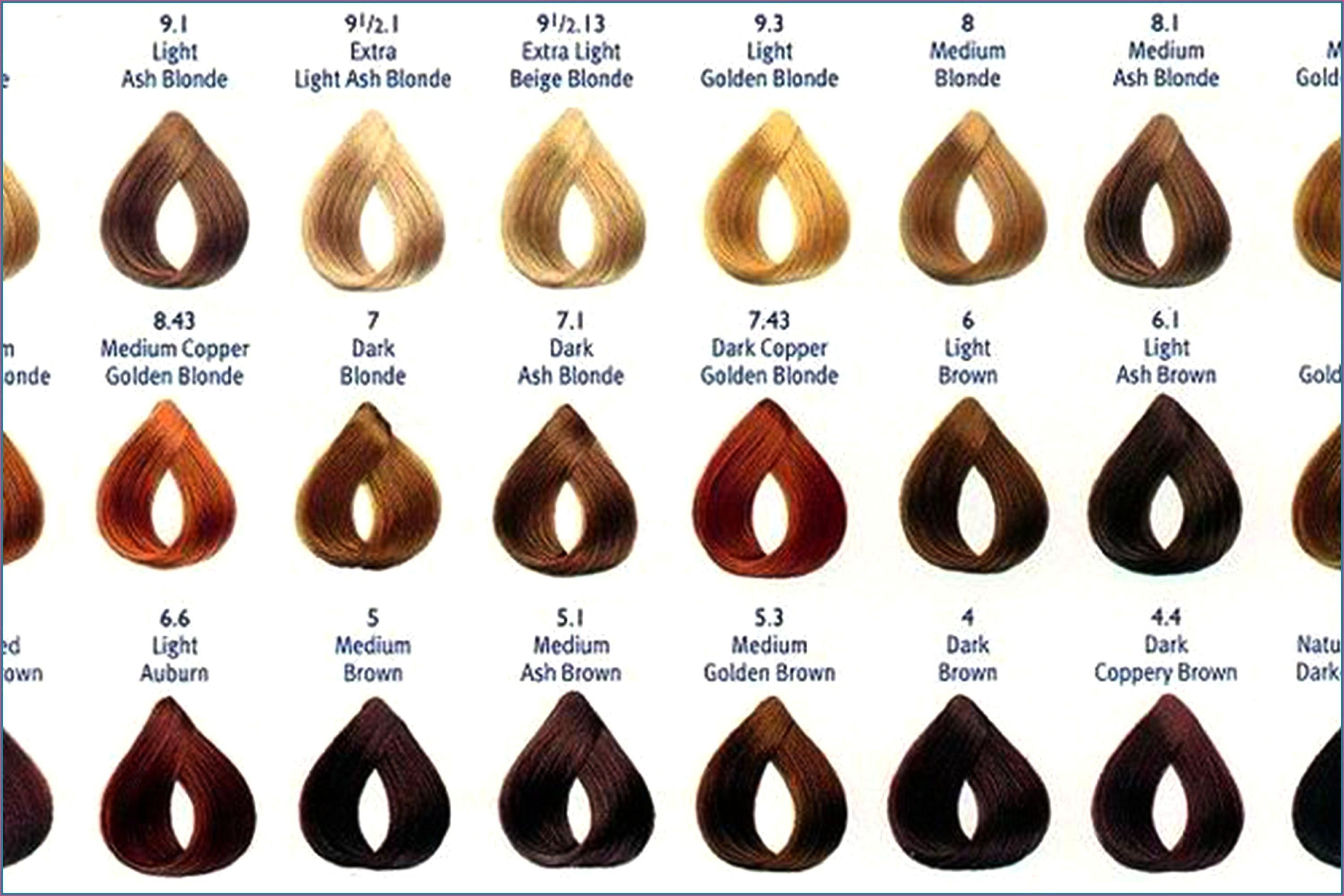 Wwwspatesflorist Colorinsider Matrix Chart Color Learn Truth About Check More The Atmatr In 2020 Hair Color Chart Matrix Hair Color Matrix Hair Color Chart