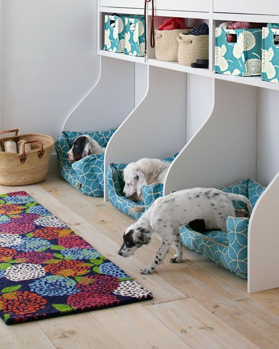 Keep Pet Supplies Organized With These 11 Smart Storage Ideas Dog Bedroom Animal Room Dog Rooms