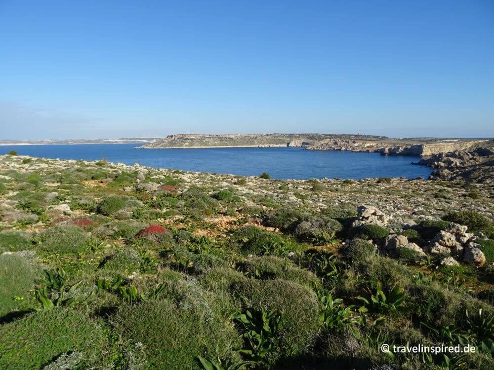 Wandern auf Malta: 5 schöne Wanderrouten   Travelinspired