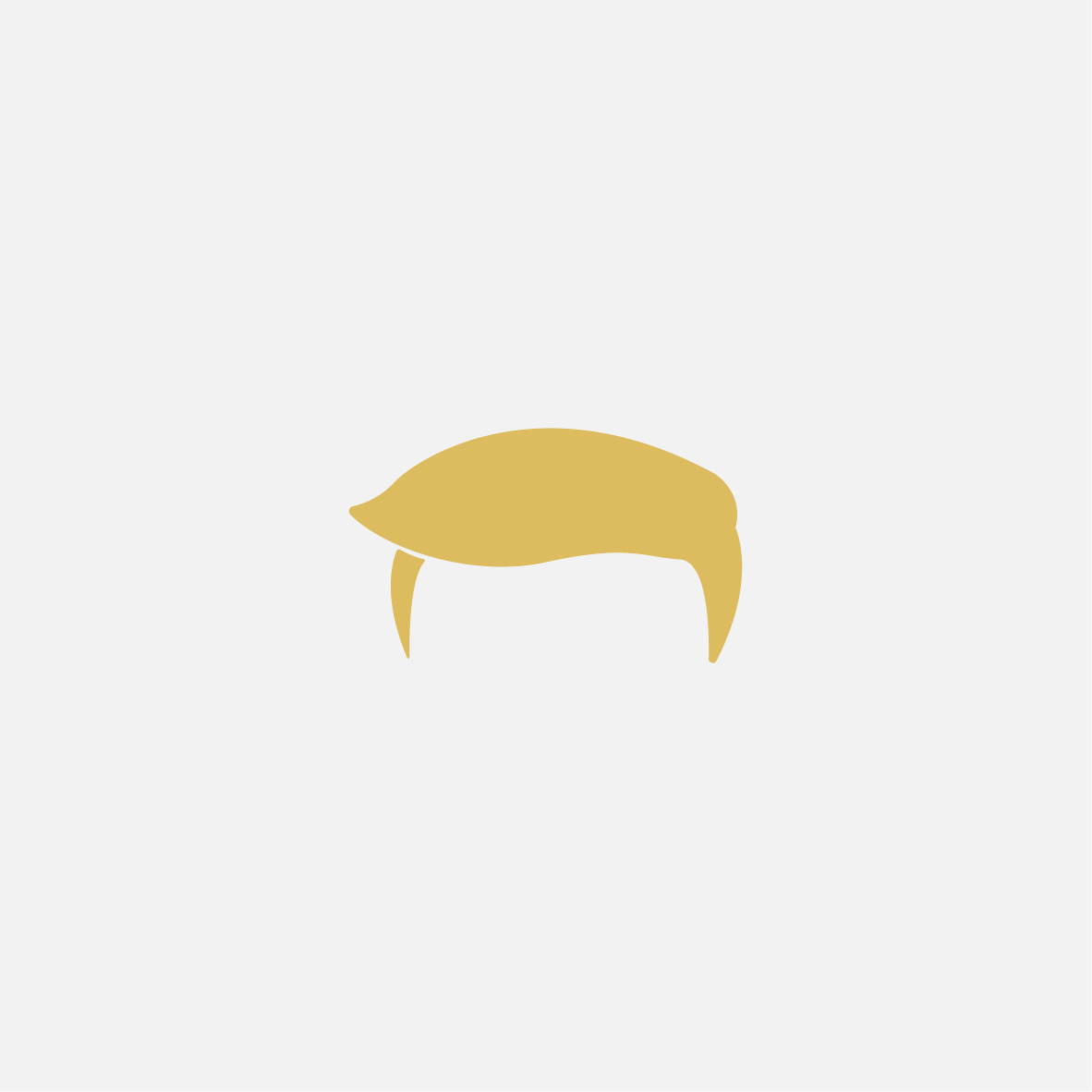 ELECTION DAY 2016 #donaldtrump #illustration #logodesign #graphicdesign #icon #illustrator #graphicart #graphicillustration #adobeillustrator #minimalist #designer #funny #character #hairdonaldtrump #electionday