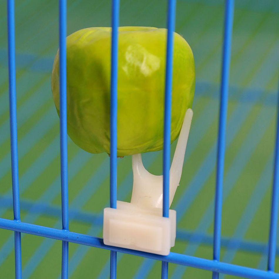 3.2*1.6 센치메터 플라스틱 조류 피더 과일 음식 포크 설치 케이지 액세서리 앵무새 기기 비둘기 공급 공급 무료 배송