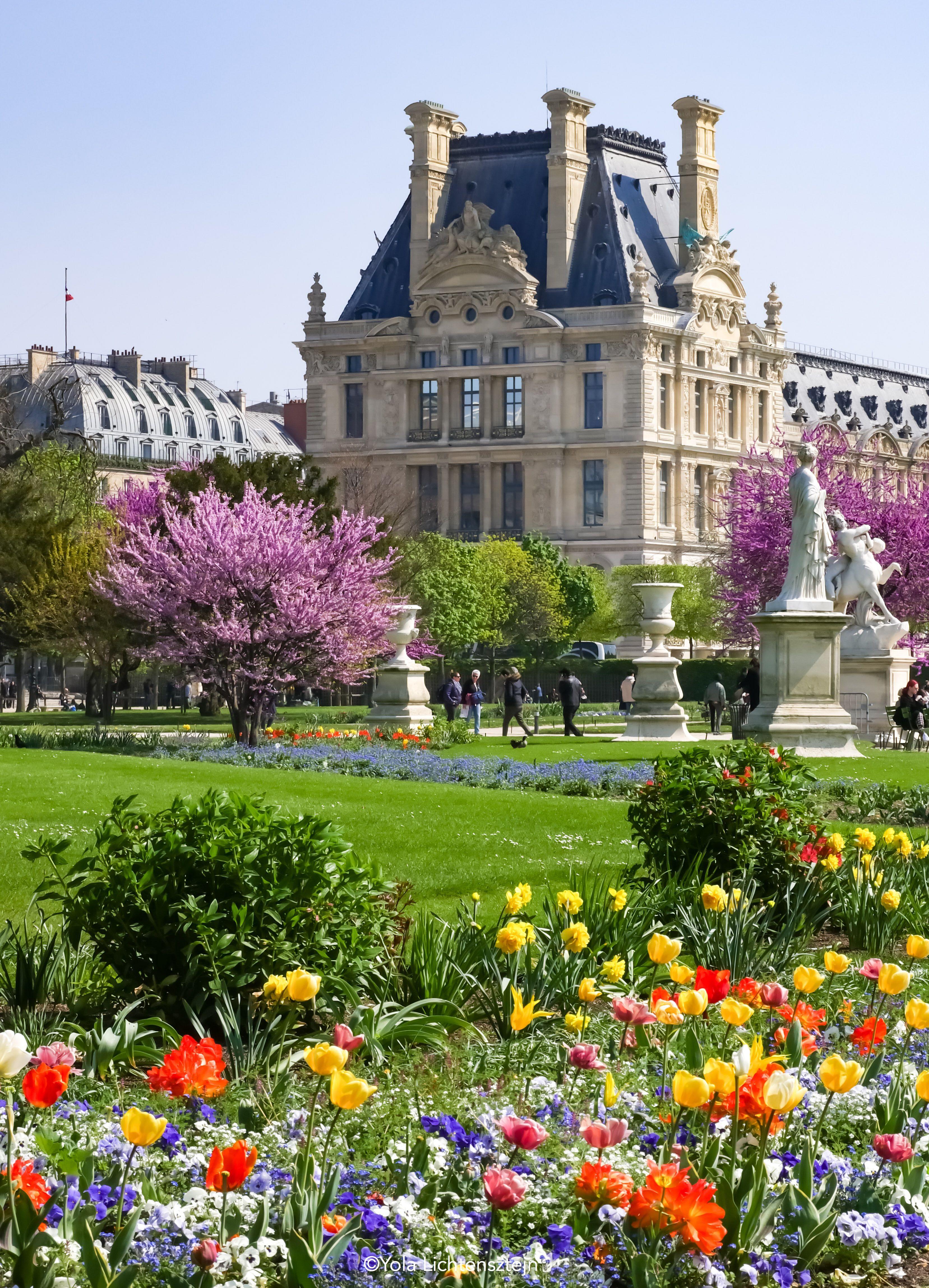 Jardin Des Tuileries Et Le Louvre Paris Paris Garden Tuileries