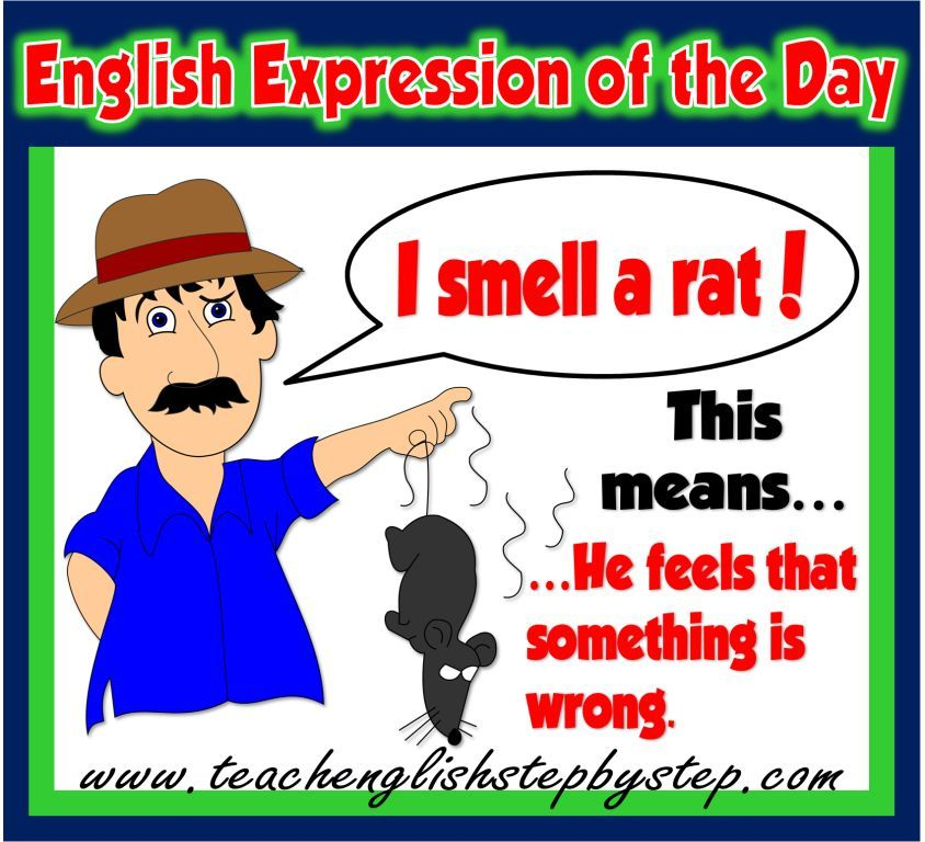 Idiomatic Expressions Teach English Step By Step Idiomatic Expressions English Expressions Expressions