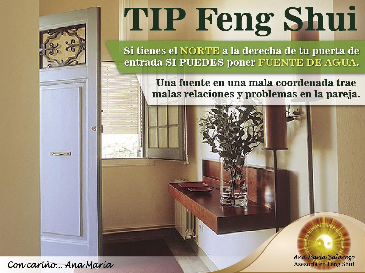 Tipfengshui s puedes colocar una fuente con agua si el for Decoracion entrada casa segun feng shui