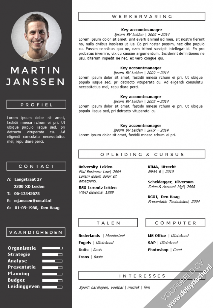 Voorbeeld Cv Work Cv Template Creative Cv Template Cv Design