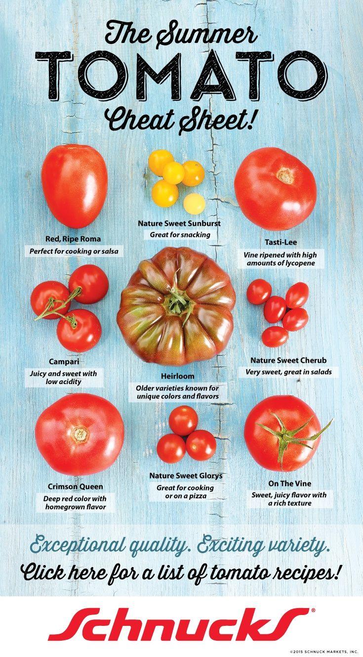 Zucchini Squash Tomato Gratin Types Of Tomatoes 400 x 300