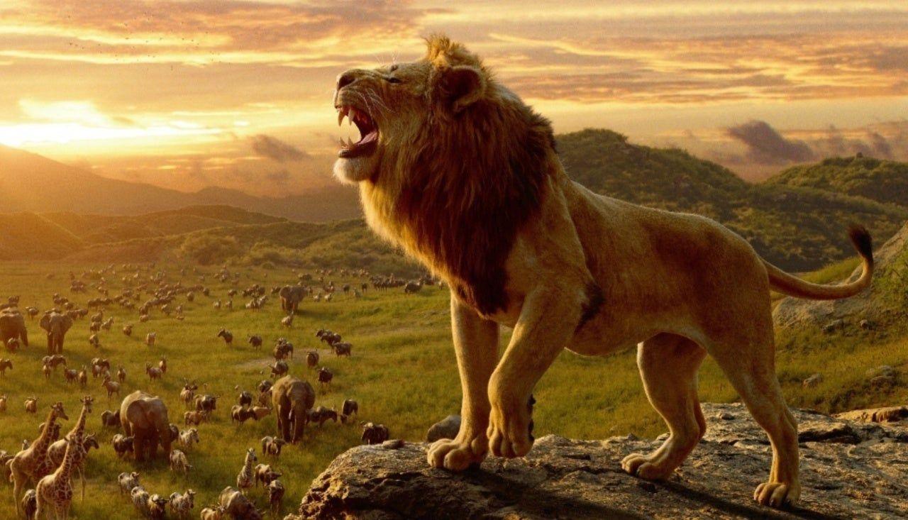The Lion King 2019 Dual Audio English Hindi Download 700mb Rei Leao Rei Leao Filme Filme O Rei Leao