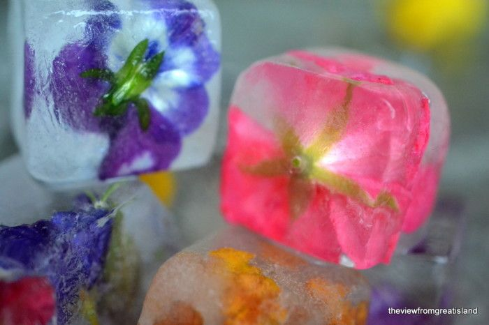bc63849126a3 Pinner sez  Maybe you ve seen these flower ice cubes floating around on the  site. They ve been intriguing me for a while