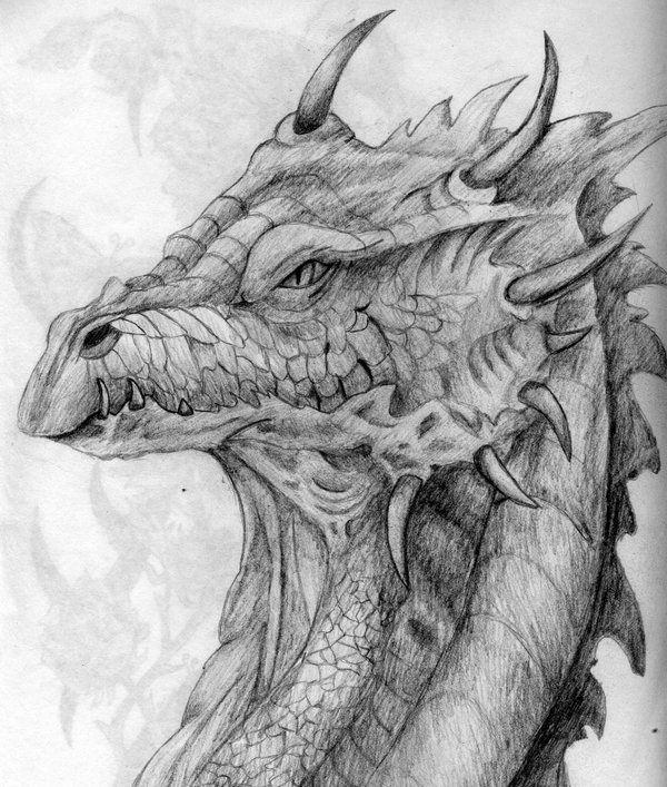A Dragon Head By Twistedxdesign Dragon Head Dragon Drawing