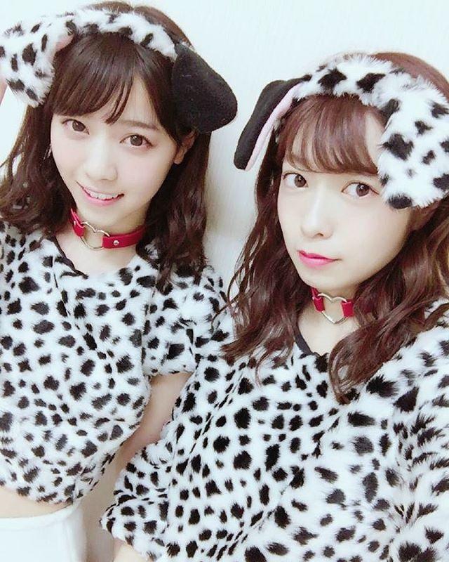 西野七瀬mail 161029 今天的斑點狗狗 是卡琳醬 伊藤かりん 的手工製作