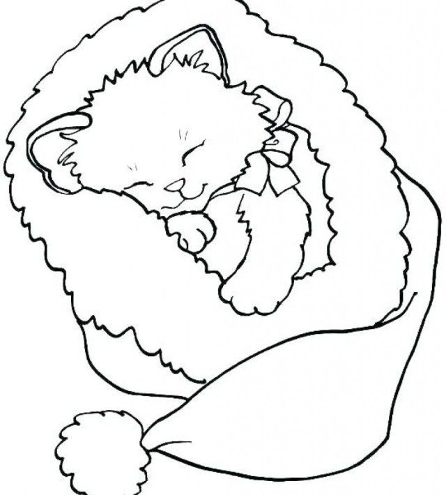 Exclusive Photo Of Kittens Coloring Pages Entitlementtrap Com Animal Coloring Pages Cat Coloring Page Printable Christmas Coloring Pages